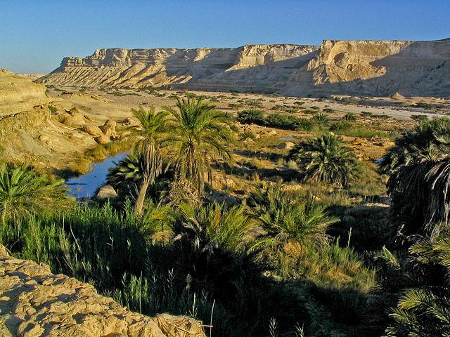 Oman-Oasis