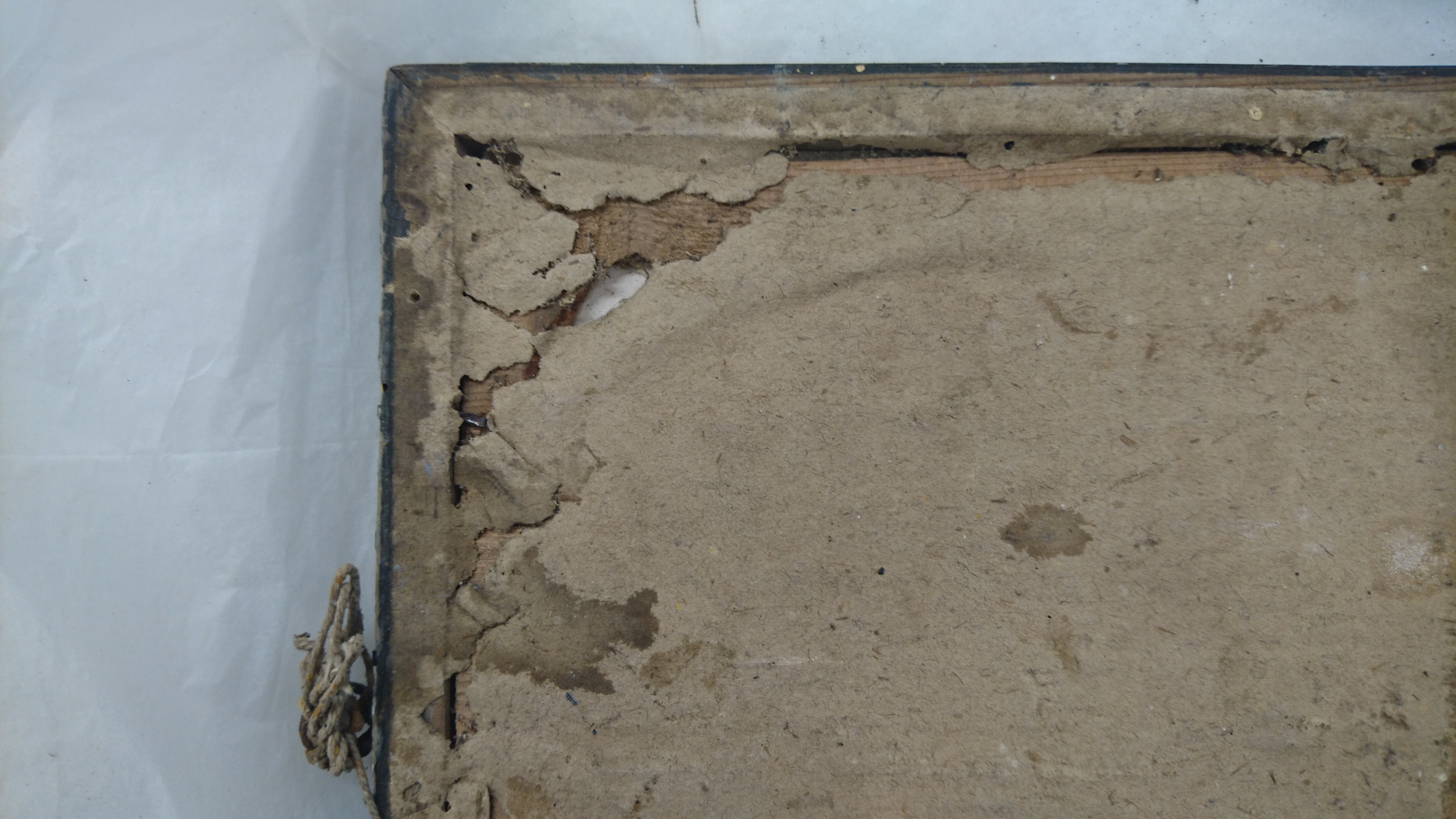 Piture frame with pest damage