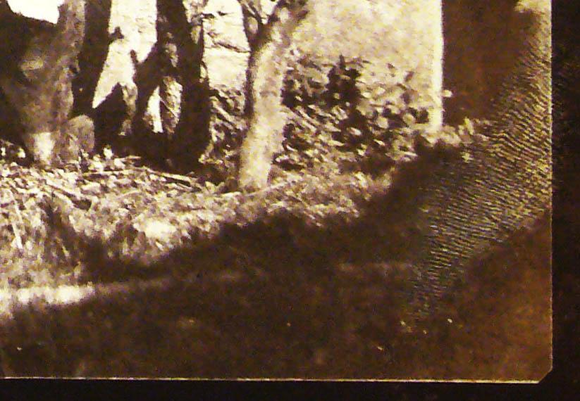SC1933-NMeM-1937-2573-4-detail