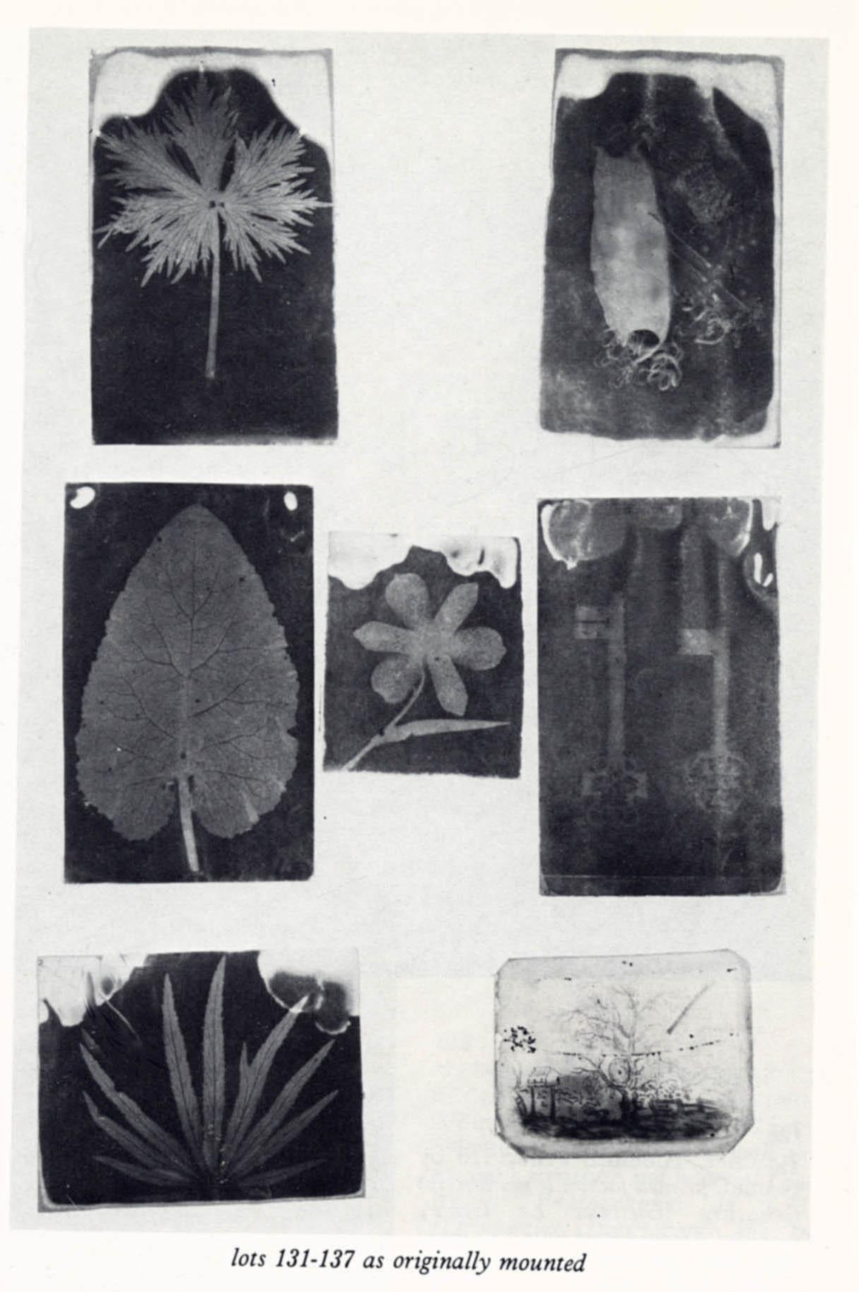 album-page-1984-de