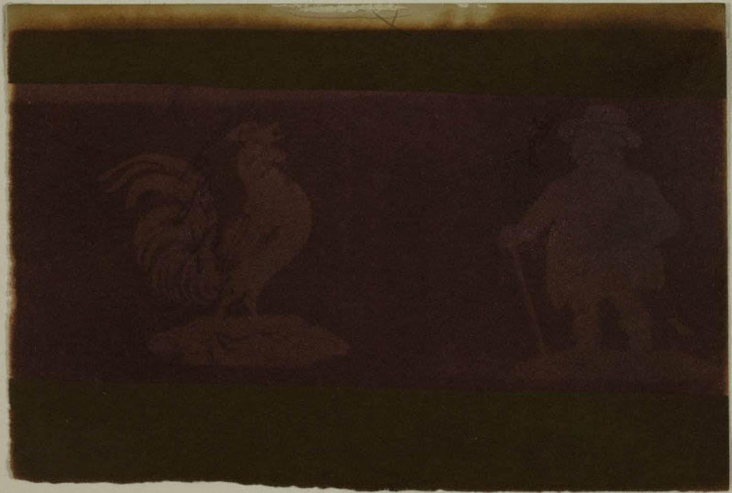 SC3671-ArtInstChicago-1975-1058