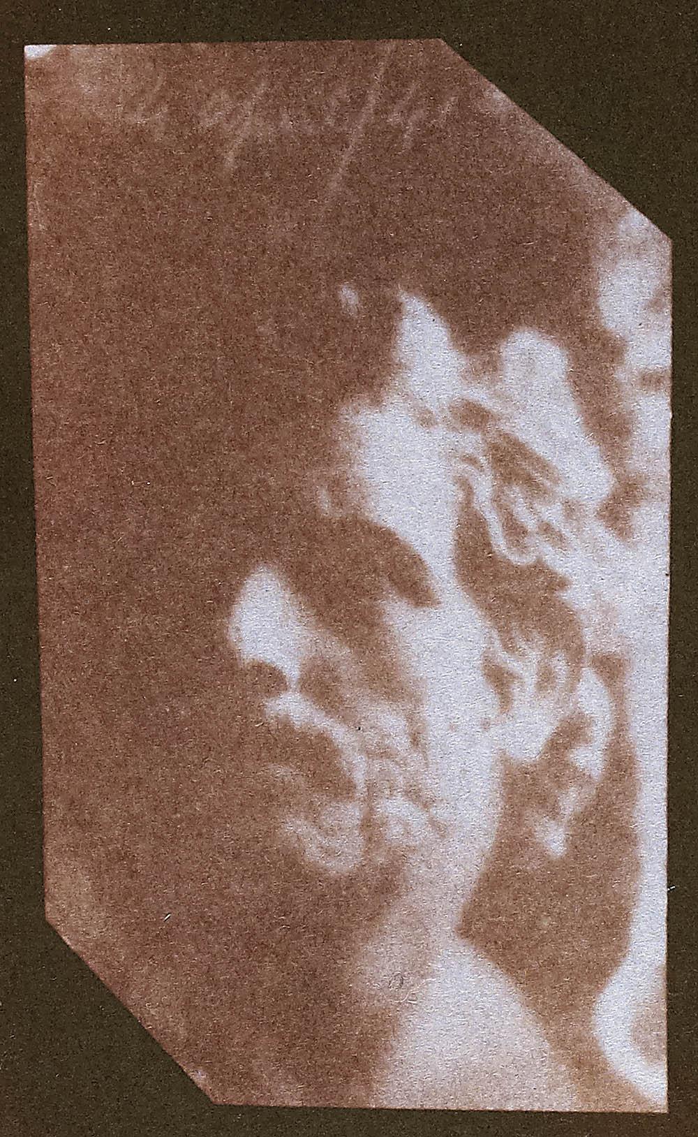 SC1116_1937-368-19