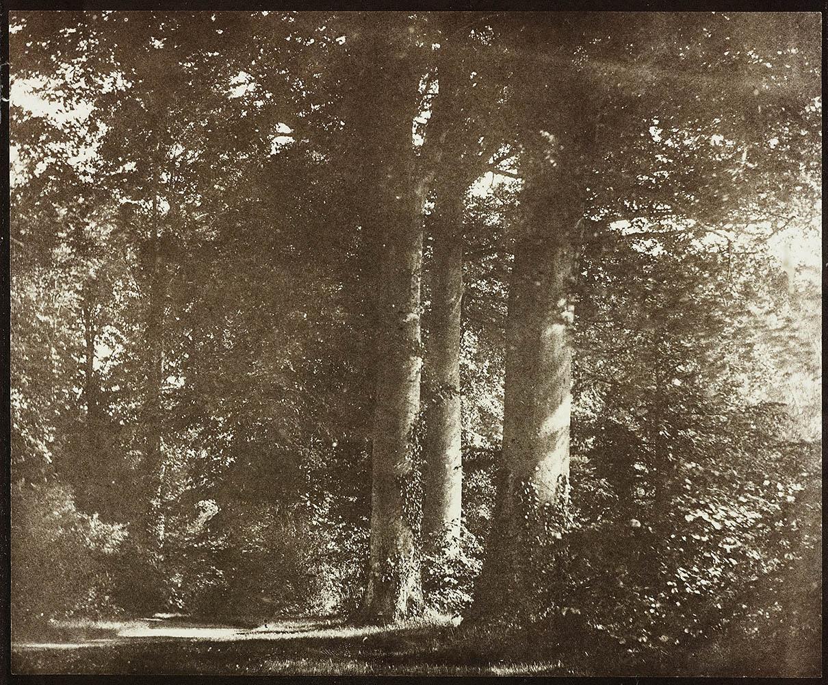 SC97_1937-2043-1