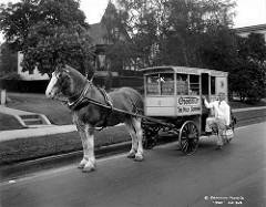 Associated Dairies truck [delivery man with horse and wagon]. Posted to Flickr by City of Vancouver Archives.