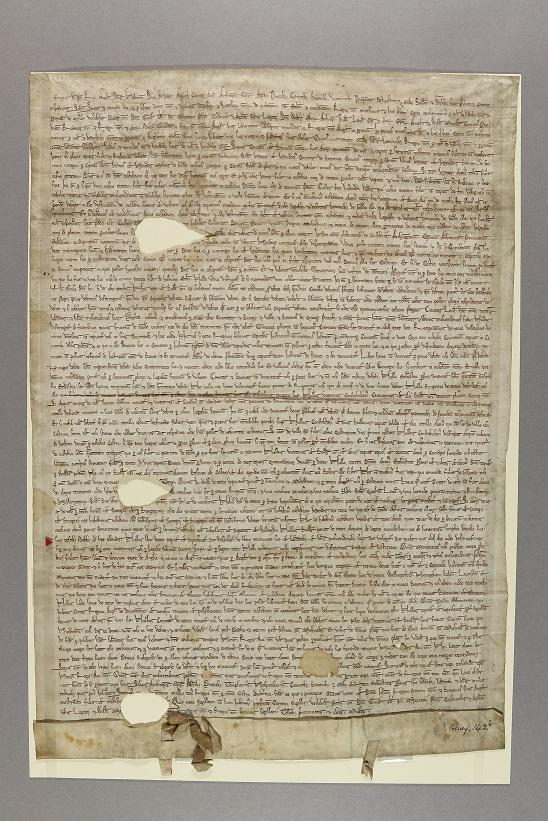 Magna Carta1