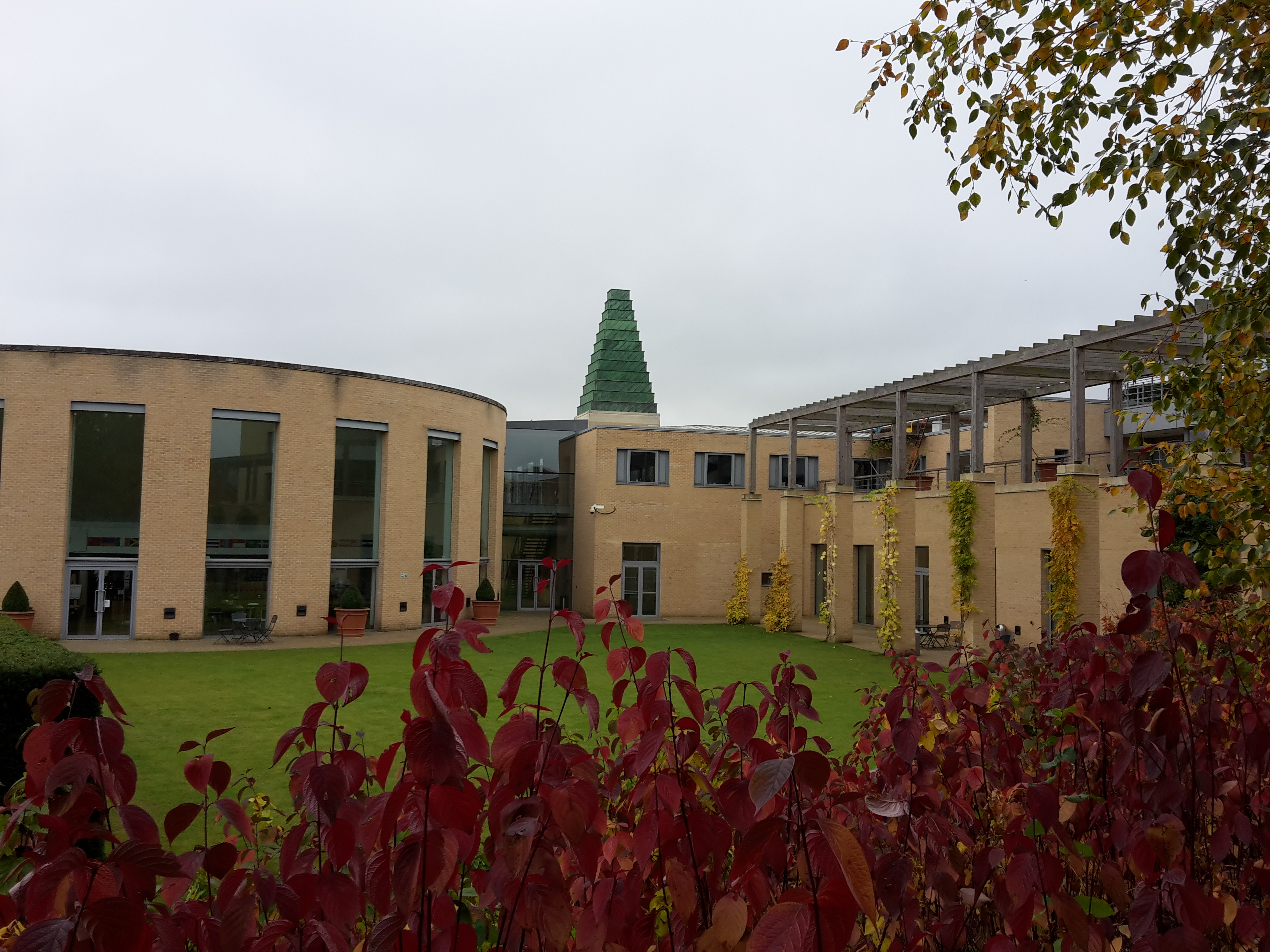 Autumn colours at Oxford Said Business School