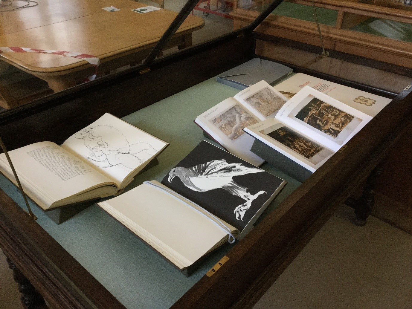 Open display case with selection of illustrated books