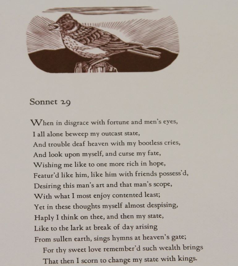 Sonnet 29, Leslie Evans, Sea Dog Press, Watertown, Massachusetts, USA