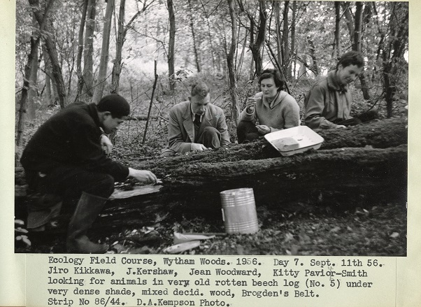 Ecology field course, Wytham Woods, 1956. (With the permission of Oxford University Museum of Natural History)