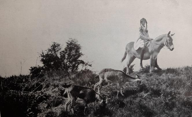 Hazel, Sal and Leez at Wytham, from Hazel : the happy journey (1945)