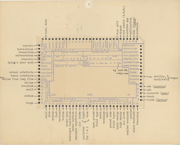 Punch card showing details of mice captured