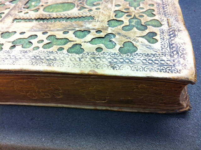Detail of binding on Bodleian 4o A 111 Th. BS., Psalms, 1593