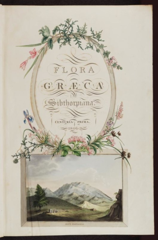 James Sowerby (after Ferdinand Bauer), Frontispiece [Mons Parnassus] for The Flora Graeca, 1806-40, hand coloured engraving (MS. Sherard 761).