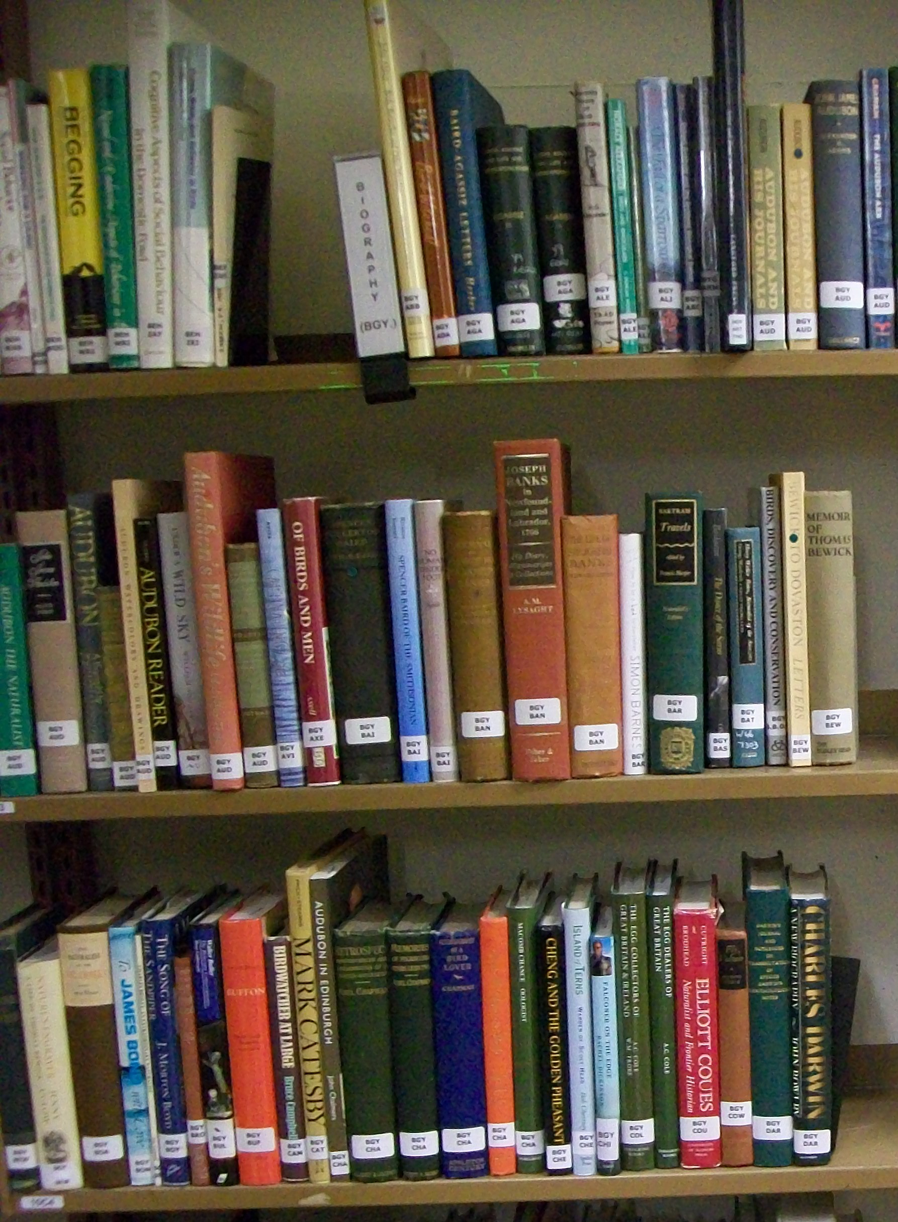 Photograph of books on biography at the Alexander Library