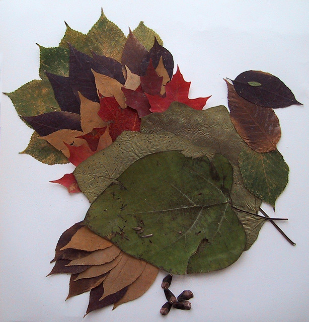 'Leaf turkey' by flickr user Jennifer13, 2006 (CC BY-NC 2.0)
