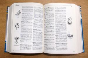 Geriadur brezhoneg gant skouerioù ha troiennoù ( An Here, 1995)