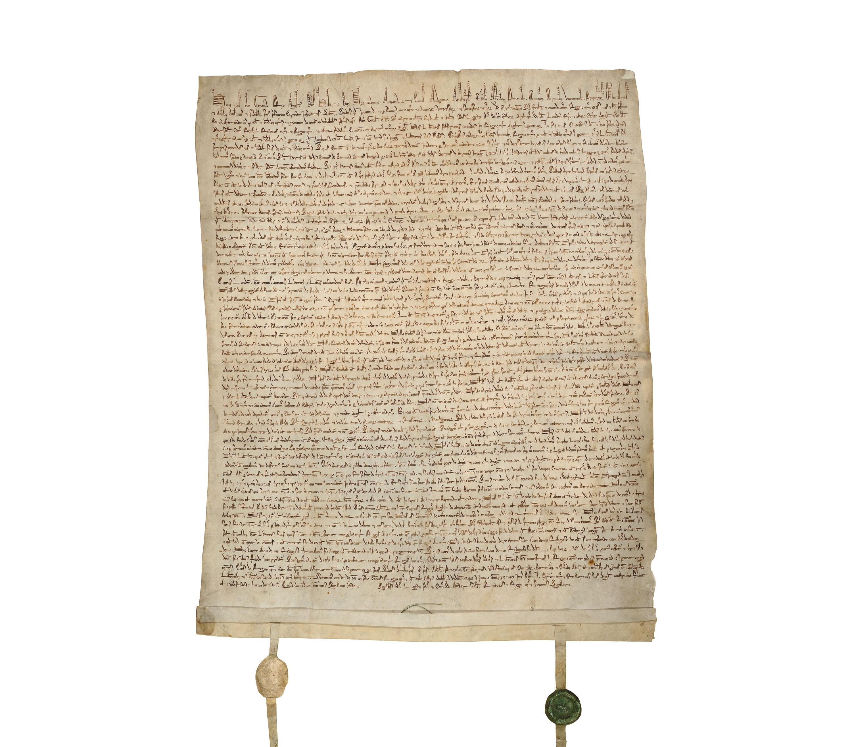 bodleian marks of genius magna carta